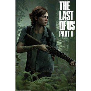 Hole In The Wall The Last of Us 2 Ellie Maxi Poster
