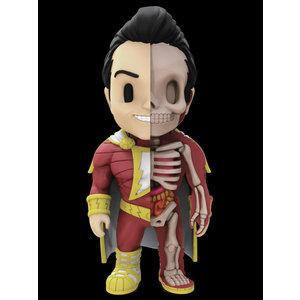 Fame Master Enterprise Ltd DC Comics: Shazam X-Ray Figurine
