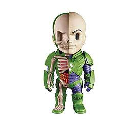 Fame Master Enterprise Ltd DC Comics: Lex Luthor X-Ray Figurine