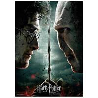 Harry Potter: Harry Vs Voldemort Puzzle 1000p