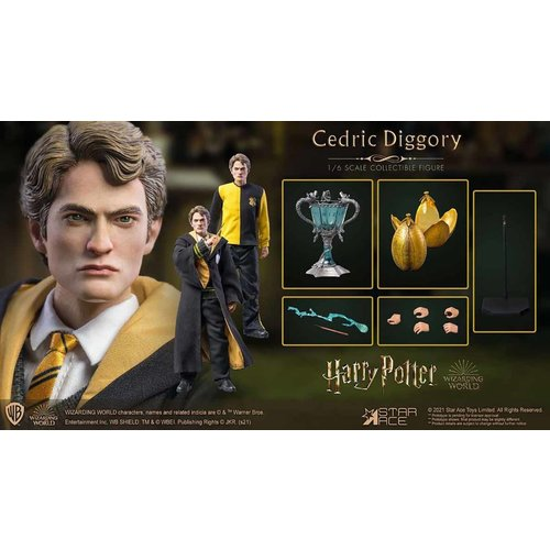 Star Ace Harry Potter and the Goblet of Fire: Deluxe Cedric Diggory 1:6 Scale Figure