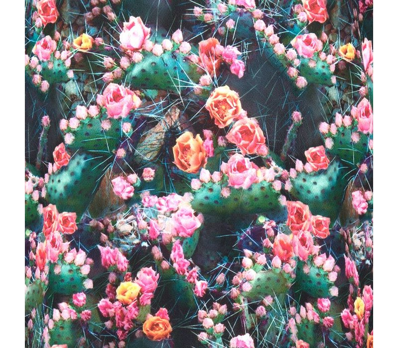 Blouse Bannalee cactus