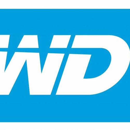 WD Surveillance Storage