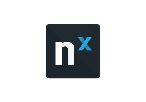 Network Optix Nx Witness - Encoder License