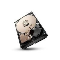 "1TB 7.200 rpm 3.5"" SATA Surveillance +Rescue HDD SV35"