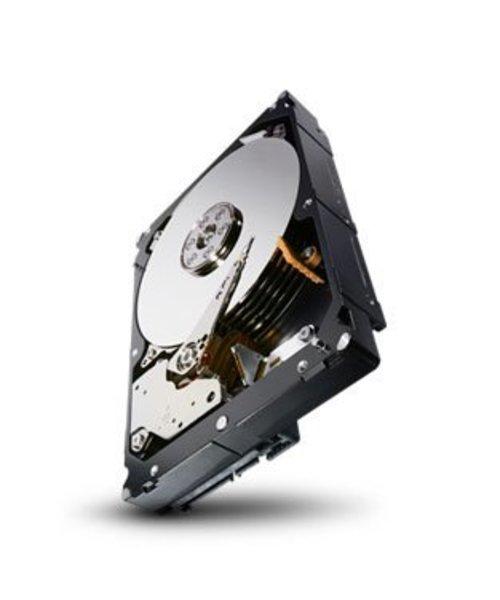 "Seagate 1TB 7.200 rpm 3.5"" SATA Enterprise Capacity"