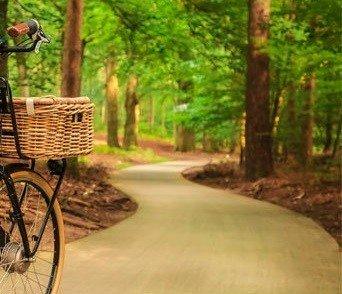E-bike accu in de herfst