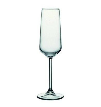 XXLselect Champagne Glas Allegra | 195ml | Ø45x226(h)mm | Per 24 Stuks