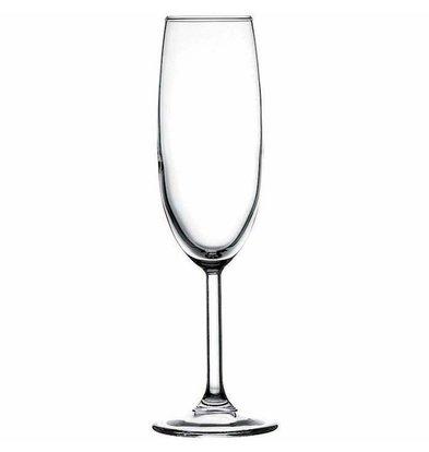 XXLselect Champagne Glas Primetime | 165ml | Ø64x205(h)mm | Per 24 Stuks