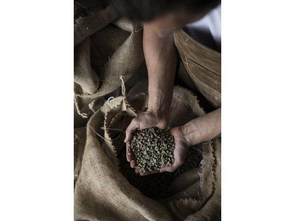 Brinks Brinks Kaffeebohnen Supreme Schwarz 10 x 1 KG Taschen