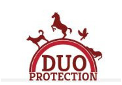 Duo Dog