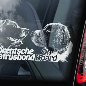 Auto Sticker Drents Patrijs