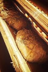 La Poiana Coop Agr TESTUN de brebis traditionnel