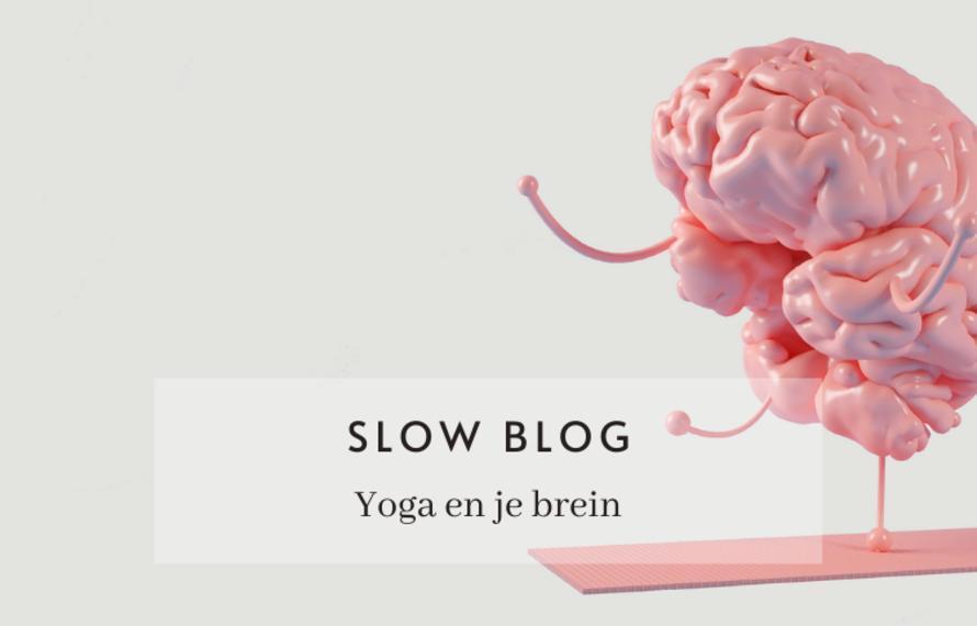 Dit gebeurt er in je brein tijdens een yoga sessie