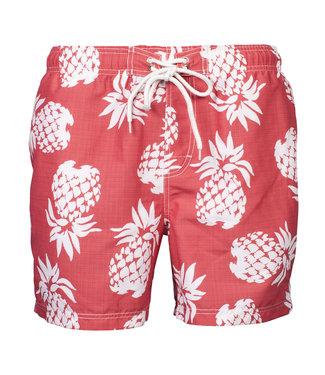 Baileys rood met wit grote ananas print