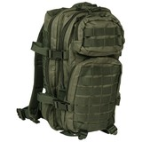 House of Carp Backpack Green Small 20 L