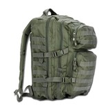 House of Carp Backpack Green Large