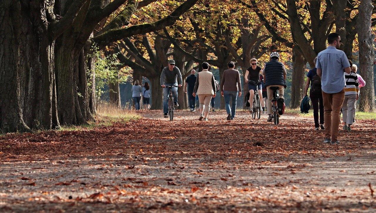 In de herfst op pad met uw scootmobiel? Zo kan dat veilig!