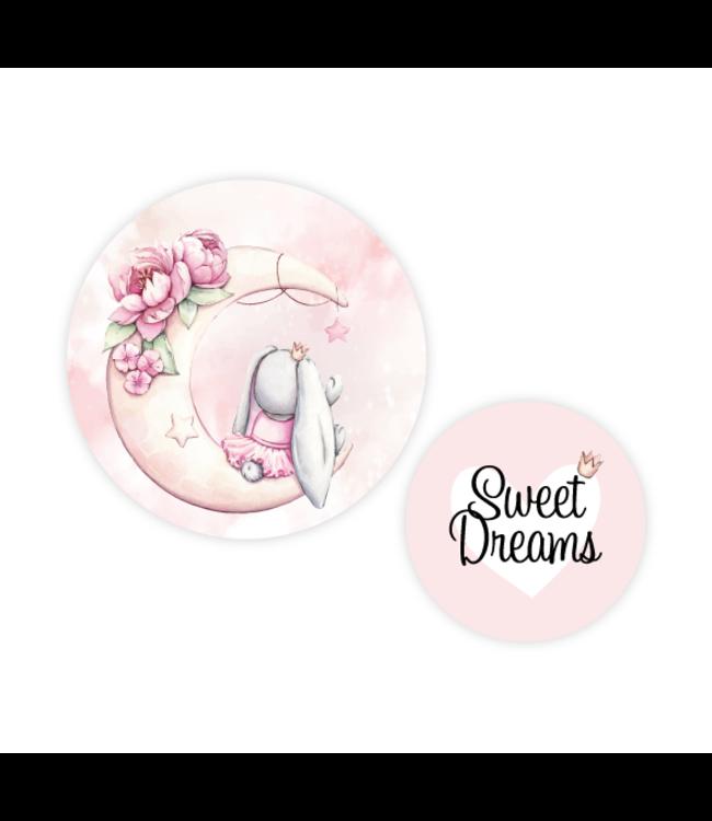 Muurcirkel set 2 stuks | Pink moon bunny