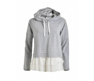 DEHA Hoodie | HOODED SWEATSHIRT | GREY