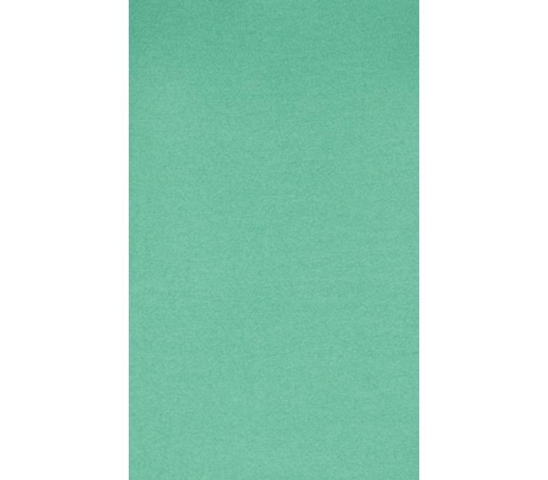 Shirt | Audrey Top Cottonclub | Mint Green