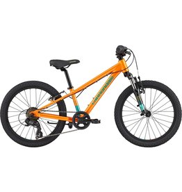 Cannondale Cannondale Trail Kids 20 Bike 2020