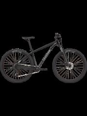 Cannondale Cannondale Trail 5 29 2021 Graphite
