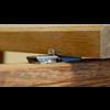 FixingGroup DILA 2 Universal-Terrassenverbinder 17 mm Edelstahl