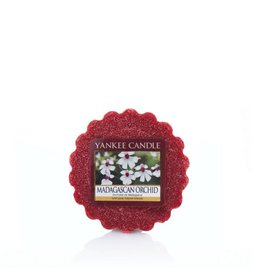 Yankee Candle Madagascan Orchid Tart