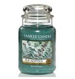 Yankee Candle Eucalyptus Large Jar