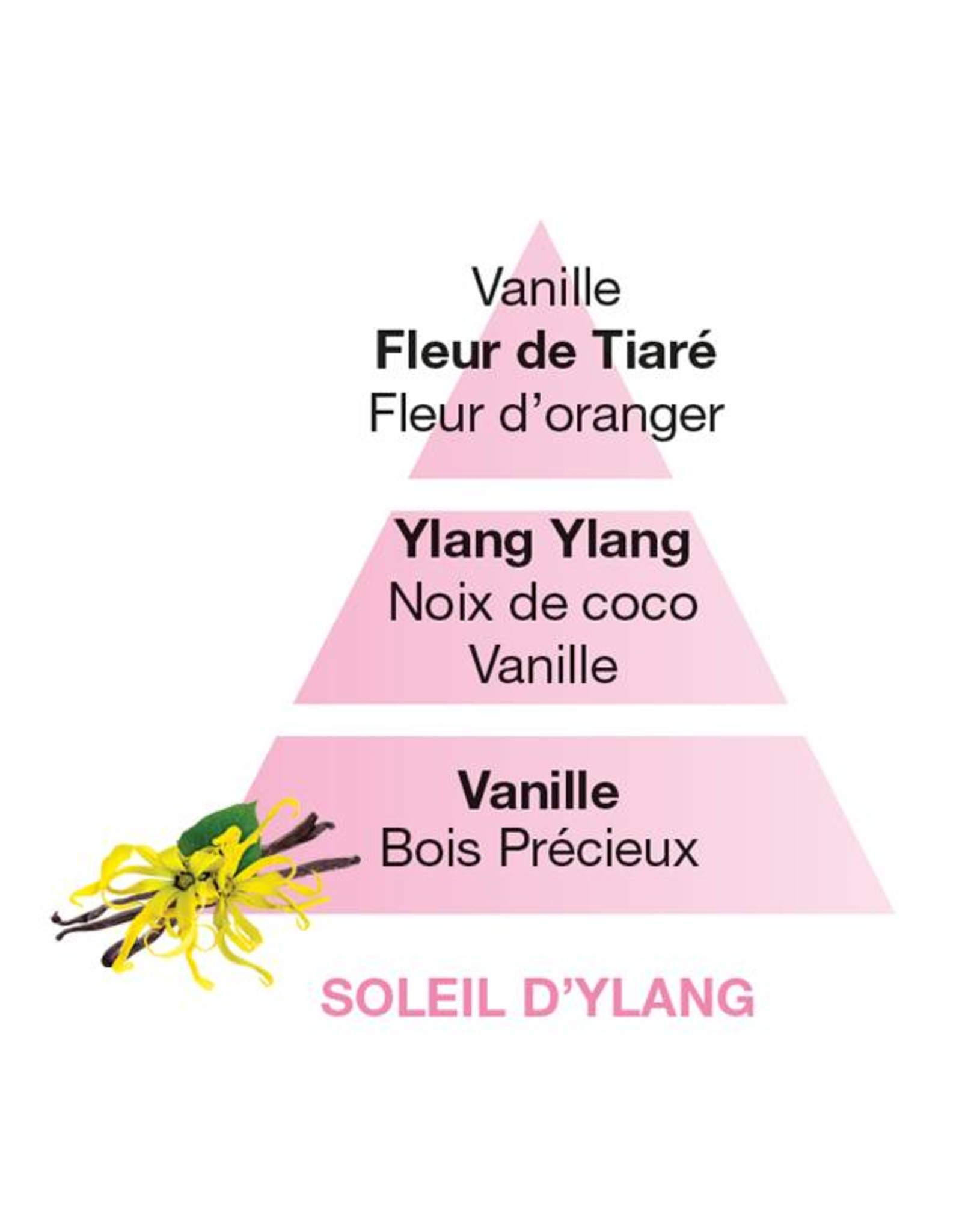 Lampe Berger Navulling - Fleurs - Soleil d'Ylang