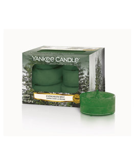 Yankee Candle Evergreen Mist - Tea Lights 12 st