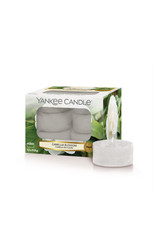 Yankee Candle Camelia Blossom - Tea lights