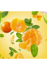 Maison Berger Geurstokjes - Revelry - Mandarine Aromatique