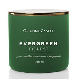 Colonial Candle Pop of Color - Evergreen Forest