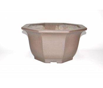 Bonsai crisol marrón 43 cm