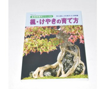 Acer Buergerianum Bonsai Handbuch