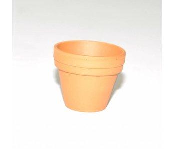 Terracotta training pot 35 mm