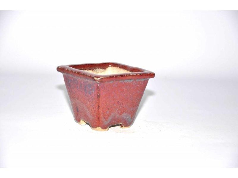 Akira matsumoto 7 cm Vierkante bonsai pot rood