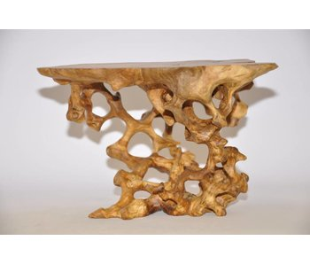 Olive root table no 45