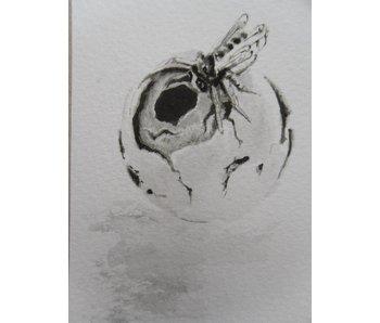 Wasp nest Tanzaku 36x6 cm