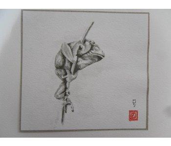 Frog reed stalk Shikishi 13x12 cm