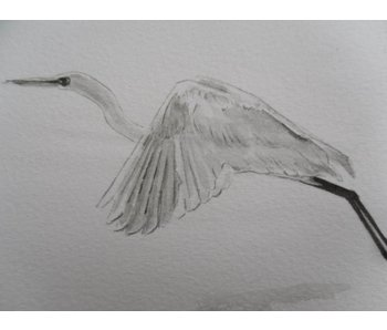 Silver heron flying Shikishi 13x12 cm