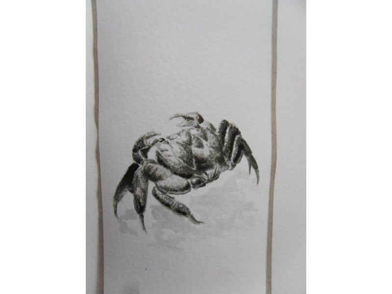 Krab 1 Tanzaku 36x6 cm
