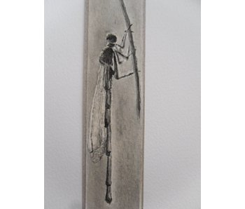 Libellula 2 Tanzaku 23,5x3 cm