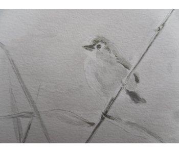 Pájaro 4 Shikishi 13x12 cm
