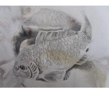 Carpa Shikishi 13x12 cm