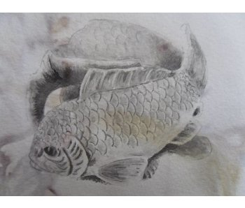 Karpfen Shikishi 13x12 cm