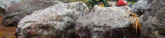 Piedras decorativas para jardín