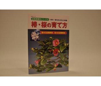 Kamelie Bonsai Handbuch